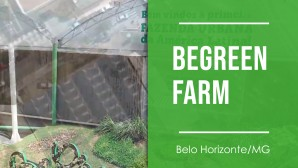 BeGreen Farm - Belo Horizonte/MG